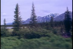 The Alaska Railroad, POV scenery, mountains, pines, gray skies Stock Footage