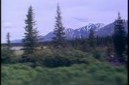 The Alaska Railroad, POV scenery, mountains, pines, gray skies Stock Footage