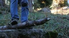 Tourist saws a tree Stock Footage