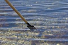 Spear and the sea - stock photo
