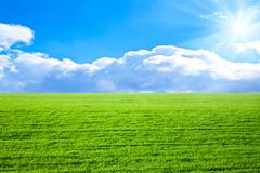 Stock Photo of green field in sun beams