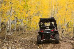Autumn fall golden Aspen forest ATV on trail 3316 Stock Photos