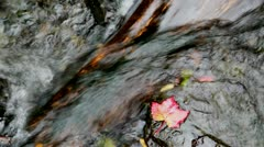 Creek in Fall, Close up Stock Footage