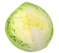 cross of yellow-green cabbage - stock photo