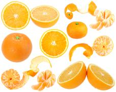 set of orange and tangerine fresh fruits - stock photo