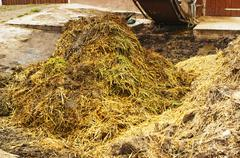 dung heap with crane - stock photo