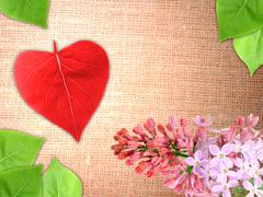 Valentine background with flowers and leaf Stock Photos