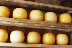 edam cheeses - stock photo