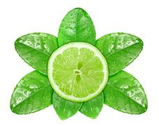 lime fruit on green leaf with dew - stock photo