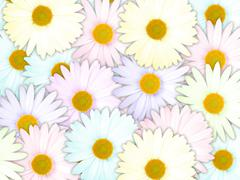 background of motley flowers - stock photo