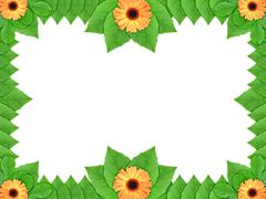 floral frame with orange flowers and green leaf - stock photo