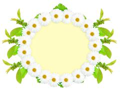 Ellipse frame with white flowers Stock Photos