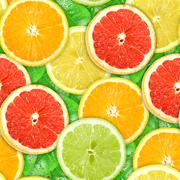 Seamless pattern with motley citrus-fruit slices Stock Photos