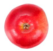 one fresh red apple - stock photo