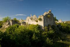 Old castle Vrana - stock photo