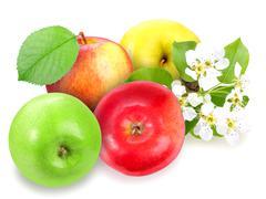 heap of fresh motley apples - stock photo