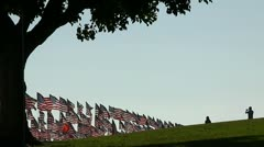 TAKING PICTURE WITH HUNDREDS OF AMERICAN FLAGS Stock Footage