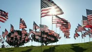 Stock Video Footage of AMERICAN FLAGS 9/11 TRIBUTE 5