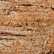 Geologic Strata Stock Photos