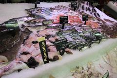 trouts, mackarels and goatfish on fish market - stock photo