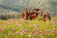 Rusty tractor in a wildflower field Stock Photos