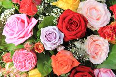 Rose bouquet in bright colors Stock Photos