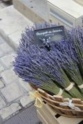Lavender for sale Stock Photos