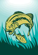 largemouth bass preying on perch fish - stock illustration