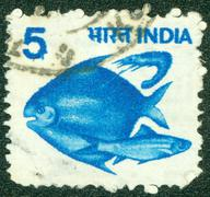 Stamp printed in India shows fishes, circa 1984 Stock Photos