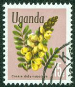 stamp printed in Uganda shows Flowers, circa 1969 - stock photo