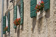 Green shutters with flowers - stock photo