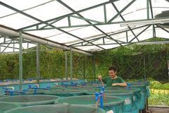 agriculture aquaculture farm - stock photo