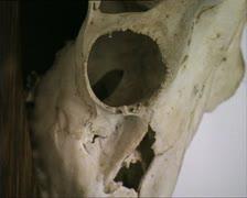 DRACULA CASTLE deer skulls zoom in&out Stock Footage