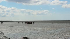 Hiking in the mud flats Stock Footage