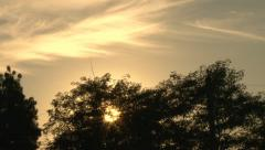 Sunrise with the Trees Stock Footage
