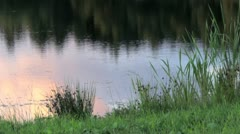 Lake pond reflection Stock Footage