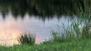 Stock Video Footage of lake pond reflection
