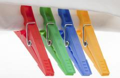 Four color pregs Stock Photos