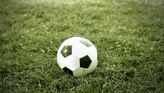 Soccer ball on the grass Stock Footage