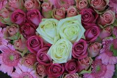Vaaleanpunainen morsiamen, kukka-asetelma, ruusut ja gerberas Kuvituskuvat