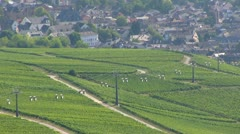 Germany - Ruedesheim - cablecar Stock Footage
