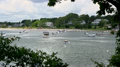 Boats & beach through trees Stock Footage