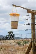 fly trap hanging on a fence - stock photo