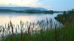 Evening landscape of lake with thickets both green woods Stock Footage