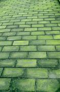 brick road - stock photo