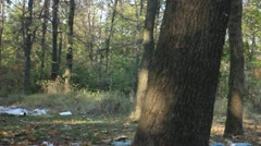 A pile of garbage in the forest Stock Footage
