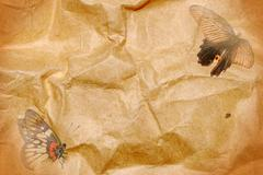 butterfly paper abstract background - stock photo