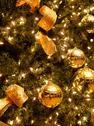 Stock Photo of christmas tree background