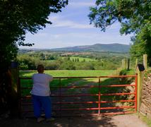 Wicklow landscape - stock photo