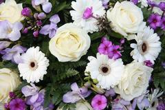 Purple and white flower arrangement Stock Photos